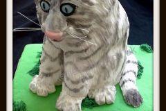 Tiger-cub